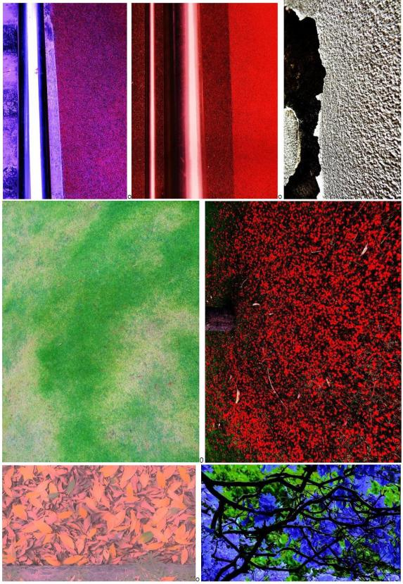 ad14-11 30sun ABStract selection abs wse pics 1
